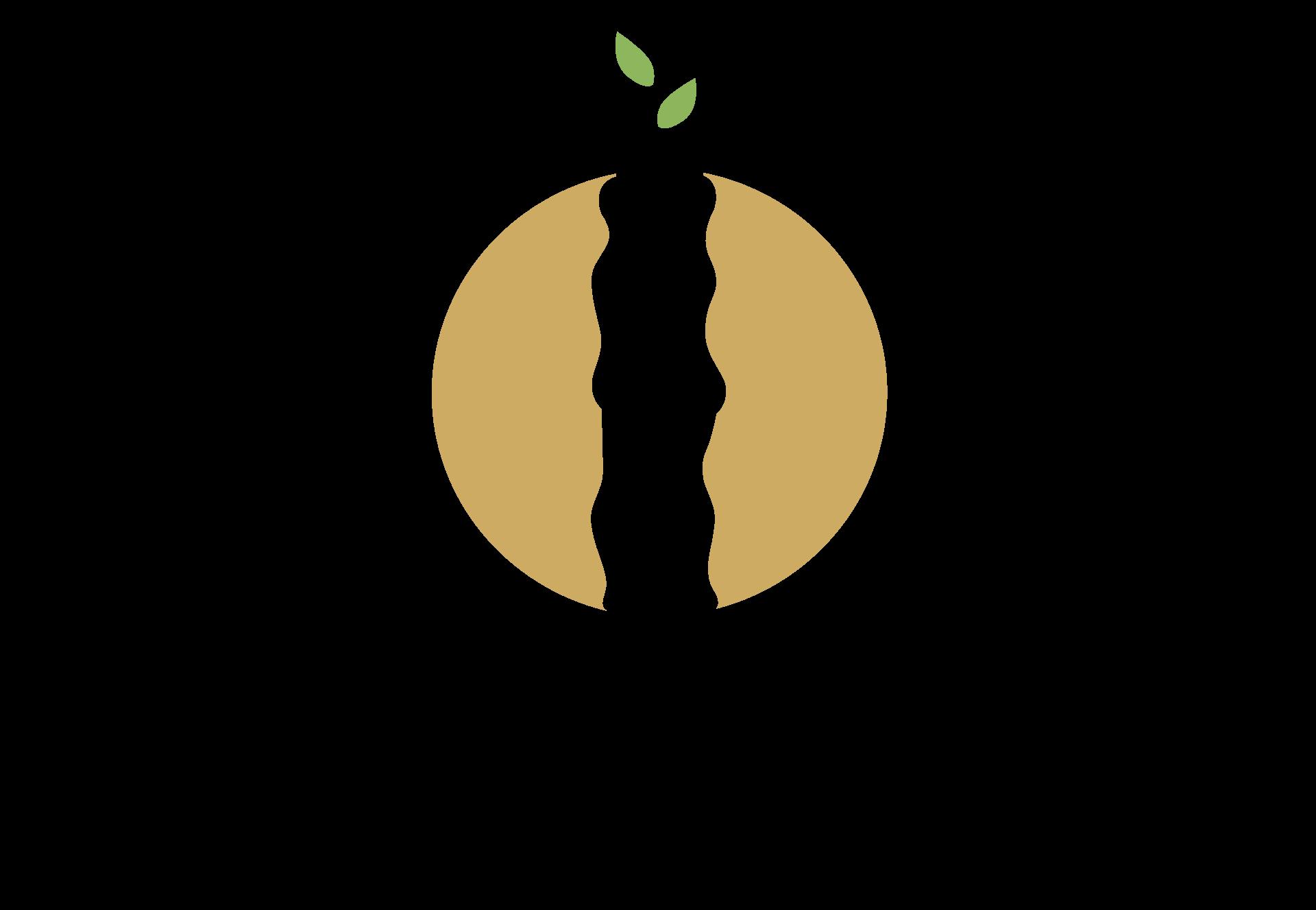 logo_final_HD_transparent